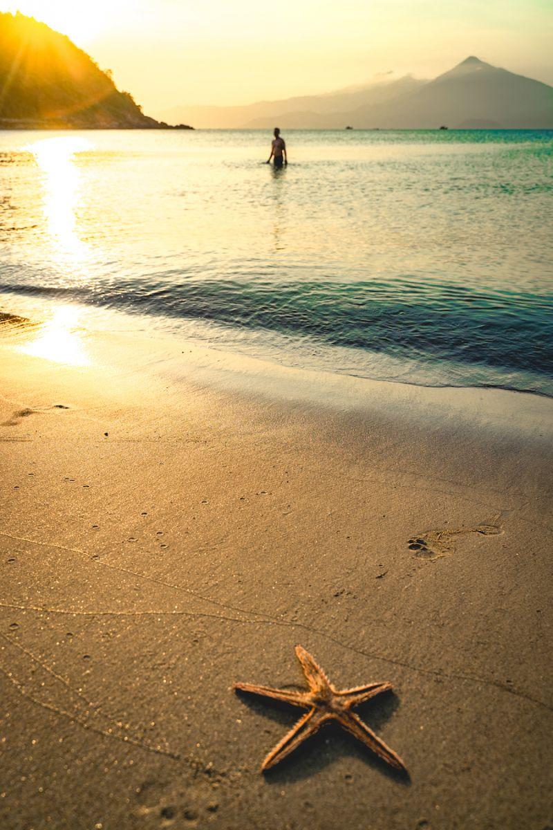 Tien Sa Beach Best Beach in Da Nang