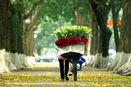 Hanoi Off the Beaten Track: Discover Hanoi's Lesser-Known Attractions with the Young Generation