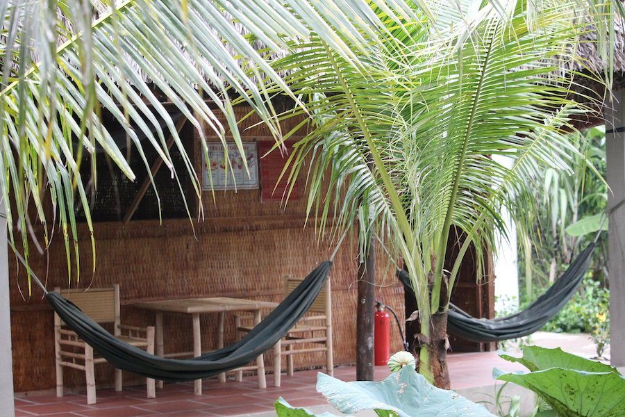 Enjoy the most nature atmosphere at Ben Tre Garden Farmstay