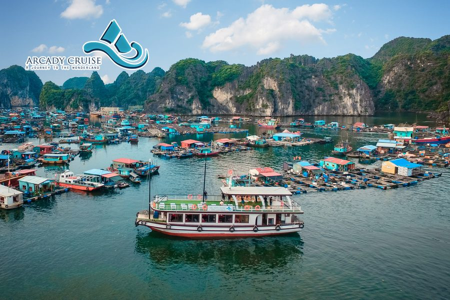 Halong Bay and Lan Ha Bay day tour cruises with Arcady Cruise