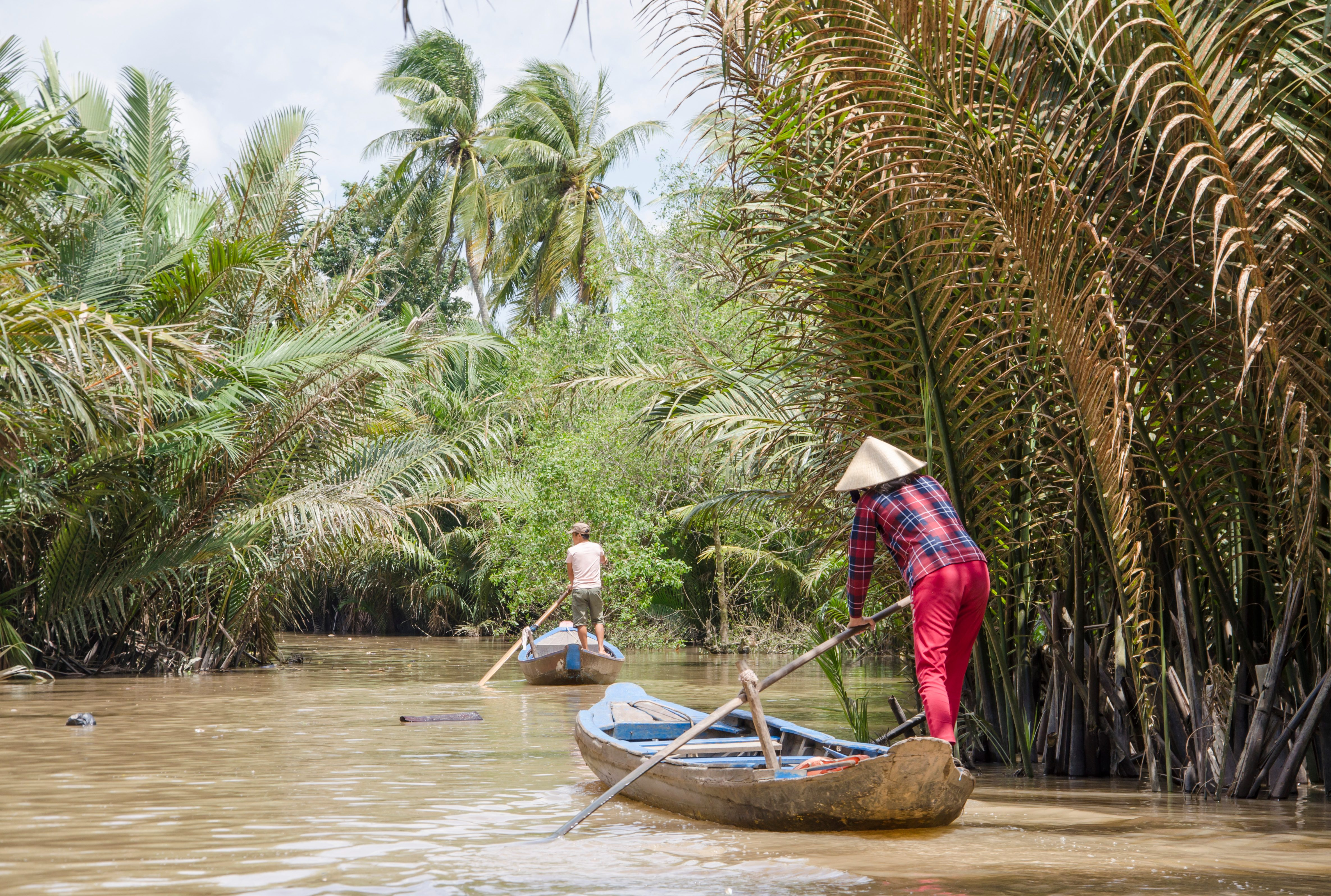 The fight is on: international efforts to save the Mekong Delta