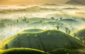 Long Coc tea hills photo earns runner-up honours at international weather photo contest