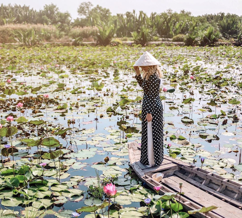 Ho Chi Minh City's Dreamy Lotus Oasis